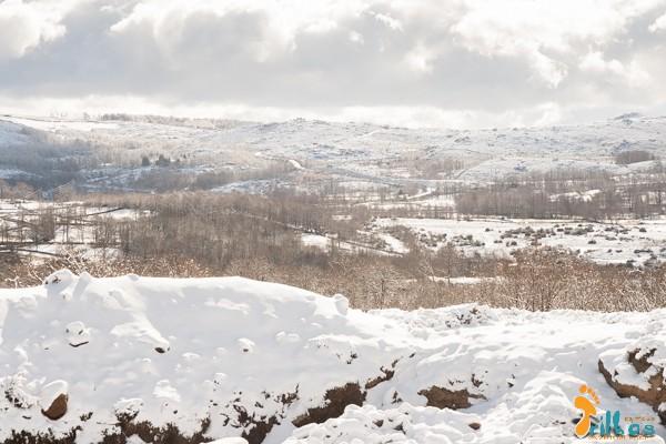 Neve no parque natural do Alvão
