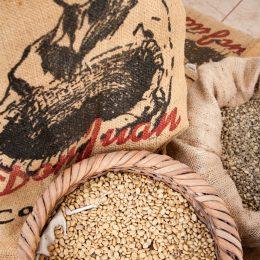 Monteverde - cafe e cacau-2