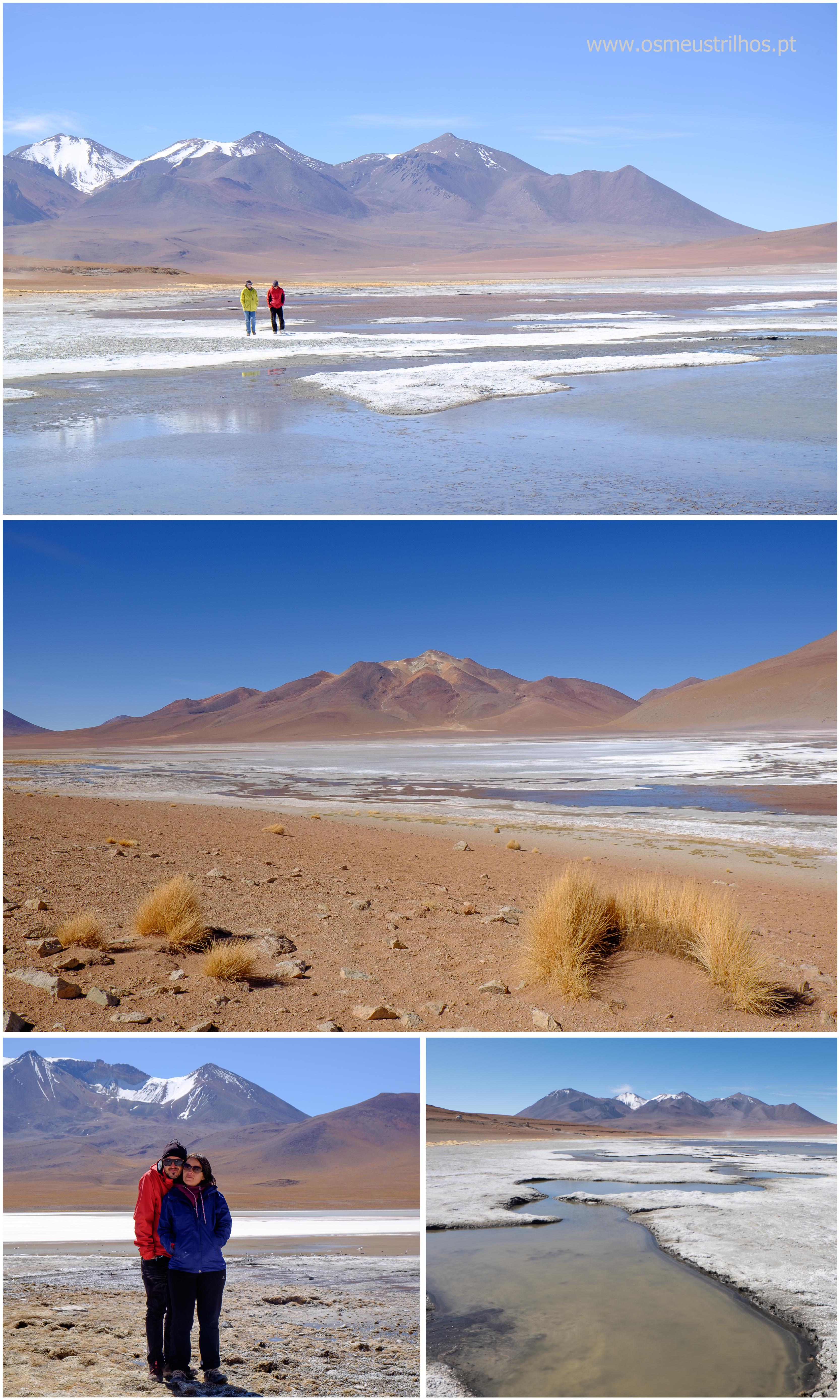 02 - lagunas altiplanicas - bolivia-5