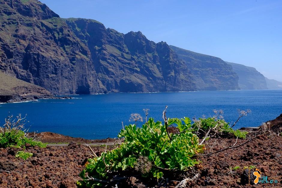 Tenerife.Los Gigantes.OsMeusTrilhos-1