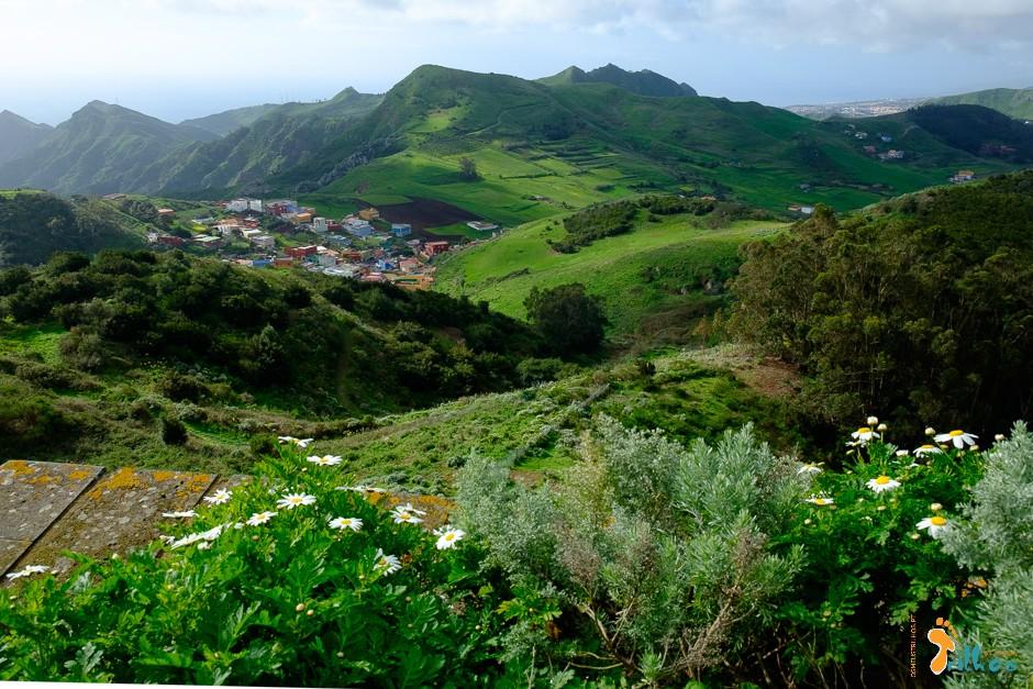 Tenerife.ParqueRuralAnaga.OsMeusTrilhos-1